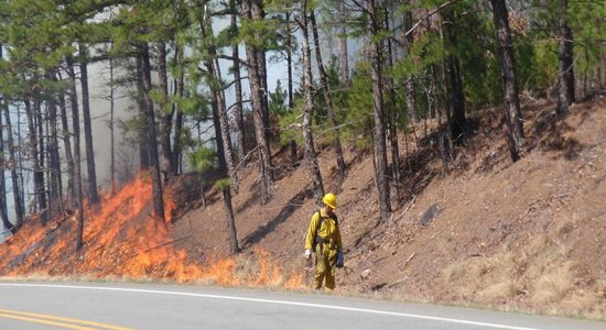 Central Arkansas Water Completes Controlled Burn  to Improve Lake Maumelle Water Quality